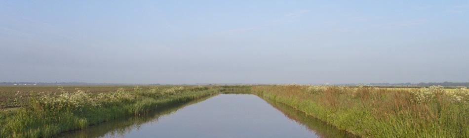 foto landschap